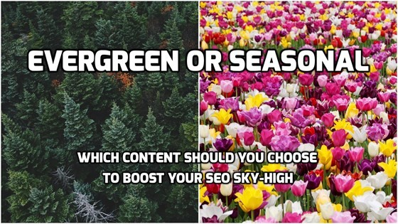 Evergreen or Seasonal: Which Content Should You Choose to Boost Your SEO Sky-High