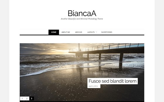 biancaa free wordpress theme