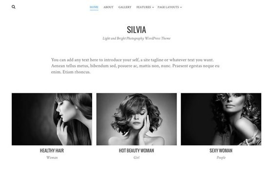 silvia free wordpress theme