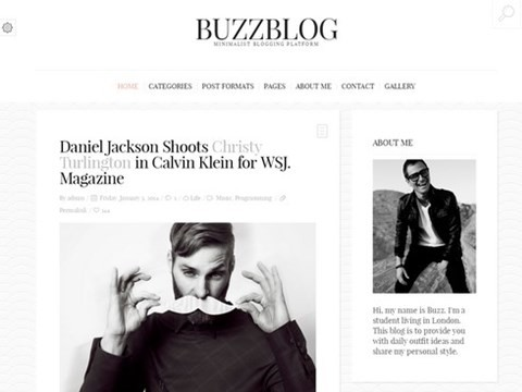 buzzblog clean blog theme