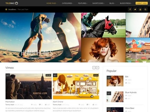 true mag wordpress template