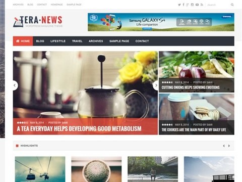 tera news wp template