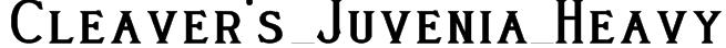 Cleaver's_Juvenia_Heavy Font
