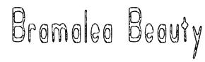 Bramalea Beauty Font