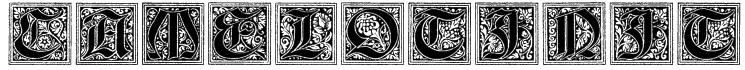 Camelot_Initials Font
