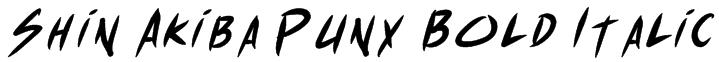 Shin Akiba Punx Bold Italic Font