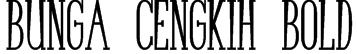 Bunga Cengkih Bold Font