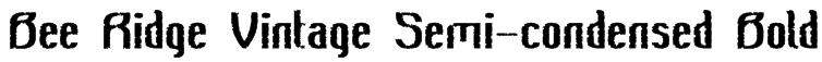 Bee Ridge Vintage Semi-condensed Bold Font