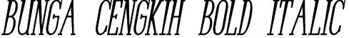 Bunga Cengkih Bold Italic Font