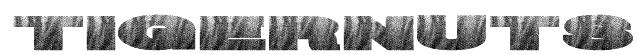 TigerNuts Font