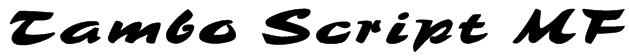 Tambo Script MF Font
