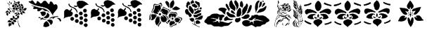 Nature Font