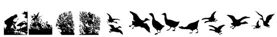 BirdsCuts Font