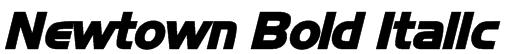 Newtown Bold Italic Font