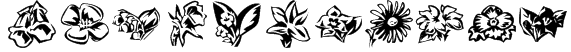 KR Beautiful Flowers 3 Font