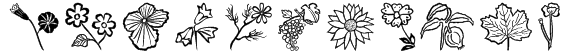 Flower Show Font