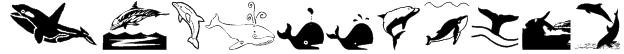Orcas Font