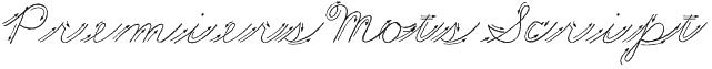 Premiers Mots Script Font