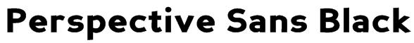 Perspective Sans Black Font