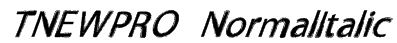 TNEWPRO NormalItalic Font