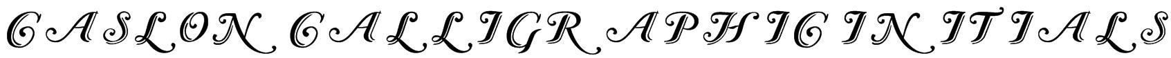 Caslon Calligraphic Initials Font