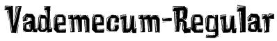 Vademecum-Regular Font