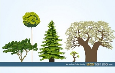 creative,design,download,elements,graphic,green,illustrator,nature,new,original,set,vector,web,bonsai,detailed,interface,unique,abstract,vectors,trees,evergreen,quality,eco,stylish,ecology,fresh,deciduous,high quality,ui elements,hires,old tree,natural trees,oak vector