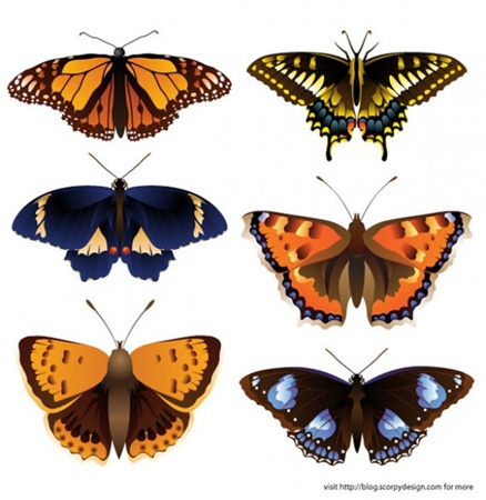 clean,clear,creative,download,graphic,illustration,illustrator,nature,new,original,pack,photoshop,vector,simple,butterfly,detailed,modern,unique,colorful,vectors,ultimate,ultra,quality,butterflies,fresh,high quality,vector graphic,intricate vector