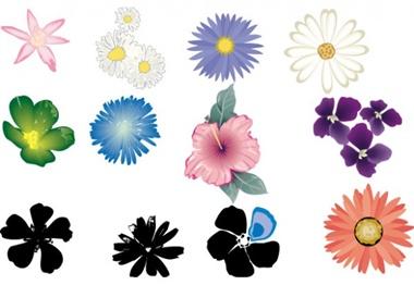 creative,download,flower,illustration,illustrator,nature,original,pack,photoshop,vector,floral,modern,unique,vectors,summer,spring,quality,petals,fresh,high quality,vector graphic vector