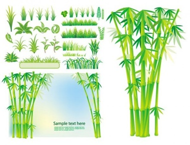 bamboo,creative,design,download,elements,graphic,green,illustrator,nature,new,original,vector,web,background,detailed,interface,grass,unique,vectors,green grass,quality,eco,stylish,fresh,high quality,ui elements,hires,grass border vector
