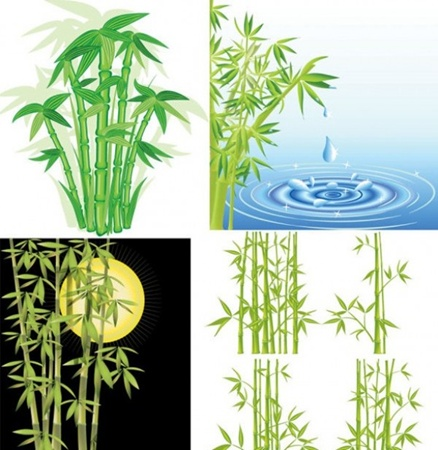 bamboo,creative,design,download,elements,graphic,green,illustrator,new,night,original,vector,web,detailed,interface,unique,vectors,quality,stylish,fresh,high quality,ui elements,hires,water splash,green bamboo,night scene vector