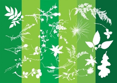 creative,design,download,graphic,green,illustrator,leaf,nature,new,original,vector,web,background,floral,silhouette,unique,abstract,vectors,plants,leaves,quality,stylish,fresh,high quality,ui elements,thistle vector