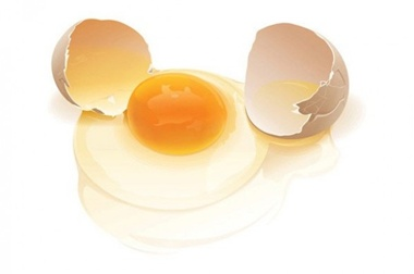 creative,design,download,egg,graphic,illustrator,new,original,vector,web,shell,unique,vectors,quality,stylish,fresh,high quality,ui elements,hires,broken egg,cracked egg,egg white,egg yolk vector