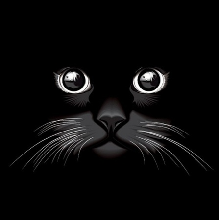 creative,design,download,eps,graphic,illustrator,original,vector,web,eyes,unique,vectors,quality,stylish,fresh,high quality,black cat,cat eyes,cat face,whiskers vector