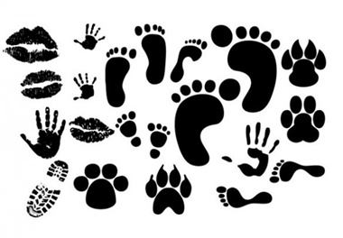 creative,design,download,elements,graphic,illustrator,kiss,new,original,set,shapes,vector,web,detailed,interface,silhouette,unique,vectors,lips,quality,paw print,stylish,prints,footprint,fresh,high quality,ui elements,hires,hand print vector