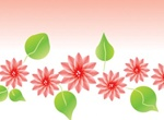 Delicate Lotus Blossom And Leaf Vector
