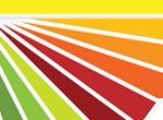 Color Palette Samples Vector Set