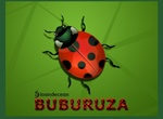 Red And Black Vector Lady Bug