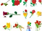 Beautiful Roses Roses Roses