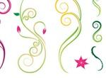 Floral Swirl Nature Design Vectors