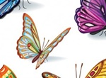 2 Beautiful Butterflies Vector Templates