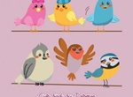 6 Animated Bird Vector Graphics Set