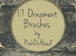 Ornament Brushes By Pink On Head