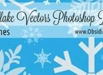 Snowflake Vectors Photoshop Brushes