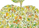 Apple Shaped Collage Of Leaves Vector Graphic