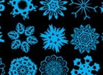 96 Snowflake Brushes