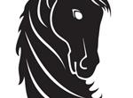 Proud Black Horse Head Vector Graphic
