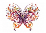 Exquisite Abstract Vector Butterfly Graphic