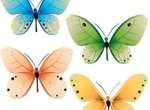 4 Delicate Colorful Butterflies Vector Set