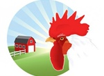 Colorful Rooster Farm Vector Scene